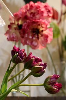 MIDORI FLOWER|Takako Kanawa|Shoichi Design|金輪 貴子