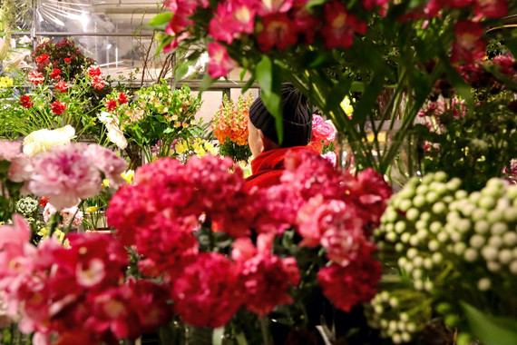 MIDORI FLOWER 021120 Takako Kanawa Shoichi Design 金輪 貴子
