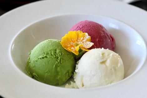 Ice cream|Tokyo Metropolitan Government|Takako Kanawa|Shoichi Design|金輪 貴子
