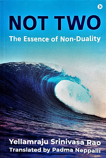 Not Two: The Essence of Non-Duality