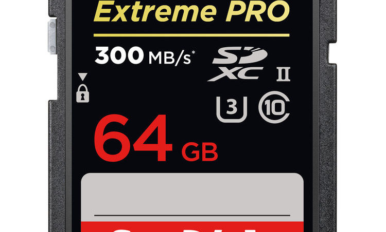 Sandisk 64GB Extreme/Extreme Pro Class 10 SD