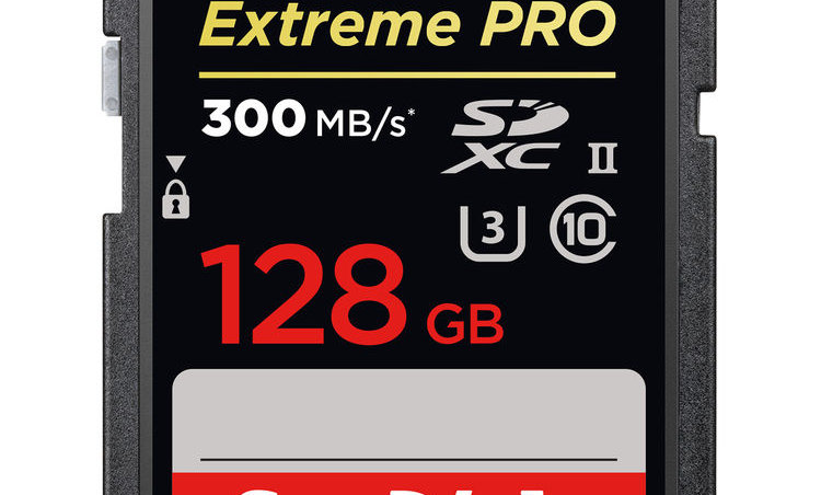 Sandisk 128GB Extreme/Extreme Pro Class 10 SD