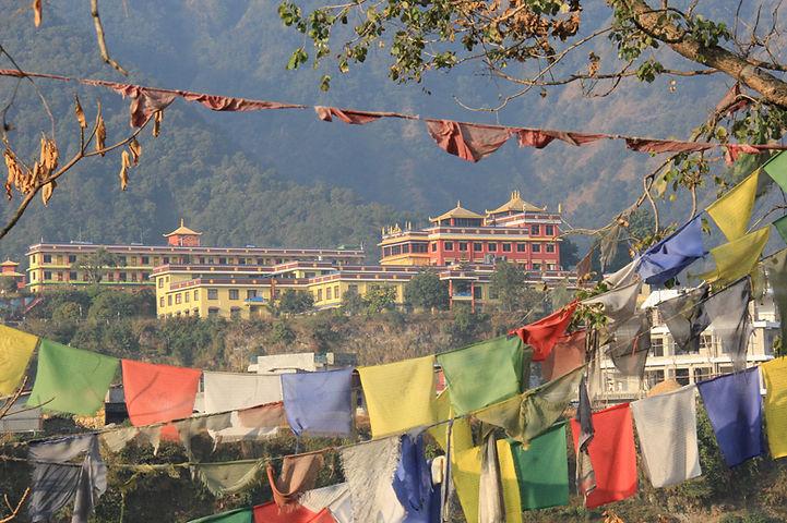 pema-tsal-tibetan-monastery.jpg
