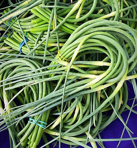 garlic scapes_edited.jpg