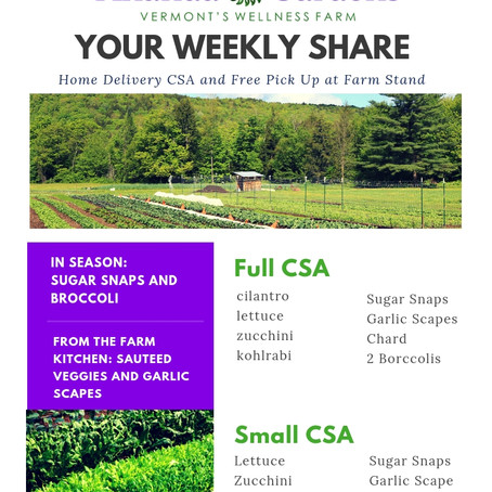 Your CSA: Week 4