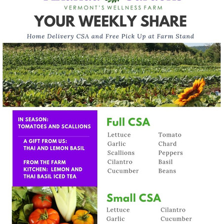 Your CSA: Week 9