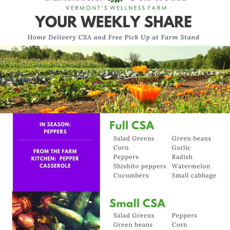 Your CSA: Week 12