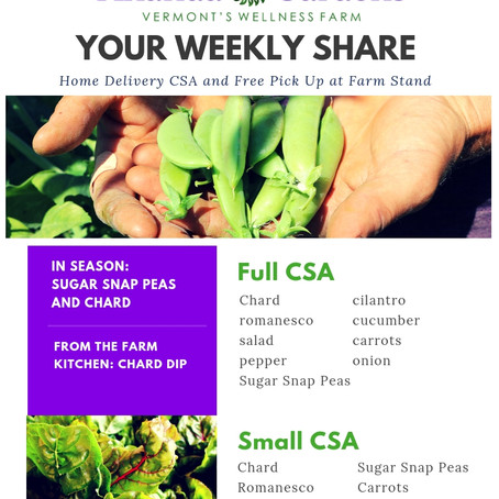 Your CSA: Week 6