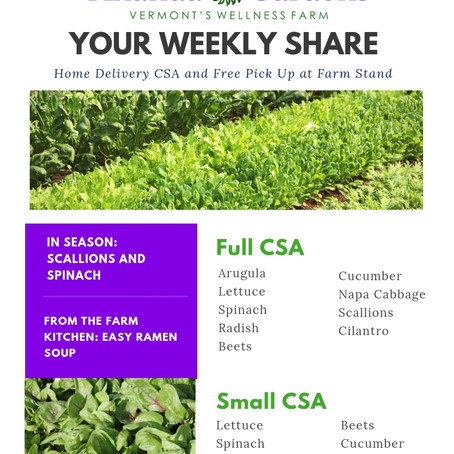 Your CSA: Week 1