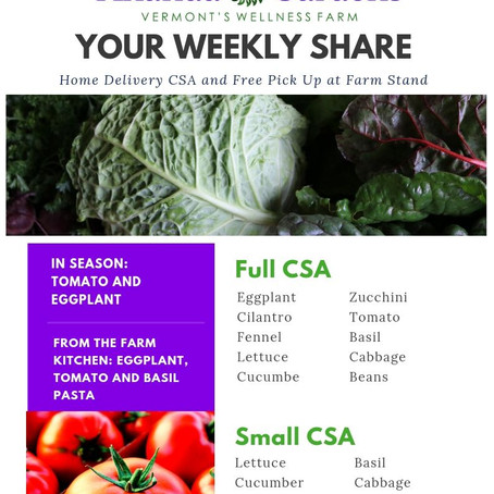Your CSA: Week 7