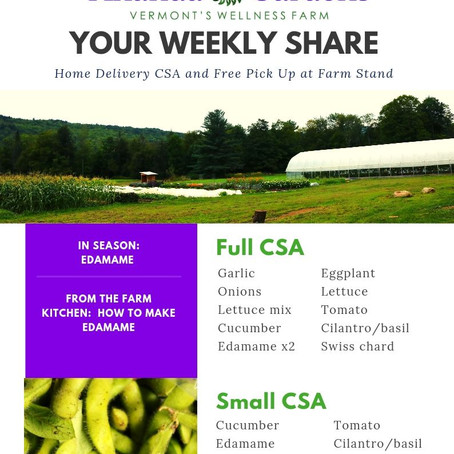 Your CSA: Week 11