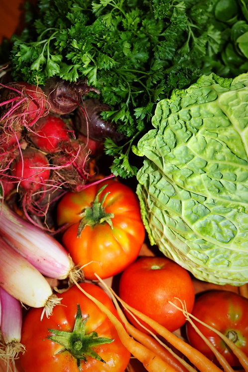 SMALL CSA ONLINE PAYMENT