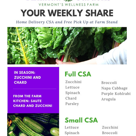 Your CSA: Week 2