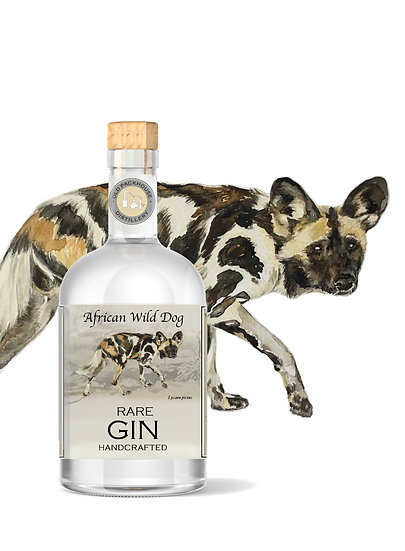 Rare Wild Dog 500ml Gin Case