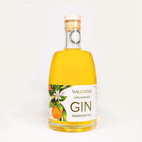 Valencia Gin 6 x 750ml