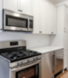 Renovated kitchen in Propsect Heights, Brooklyn, NY