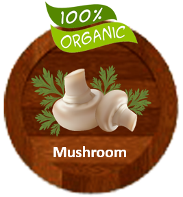 Gourmet Organic Mushroom Tomato Sauce