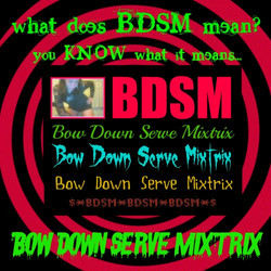 what does BDSM mean