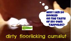 floorlicker