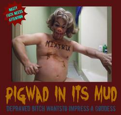 pigwad in its mud