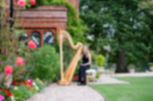 Wedding harpist Essex