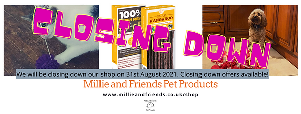 closing down banner - july 2021.png