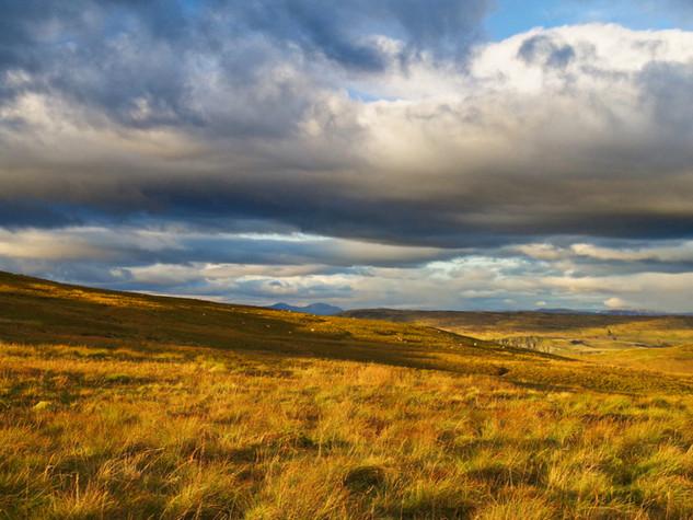 Golden Moors, Holehead