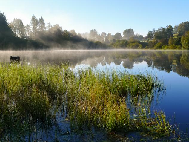 Dawn, Carbeth Loch