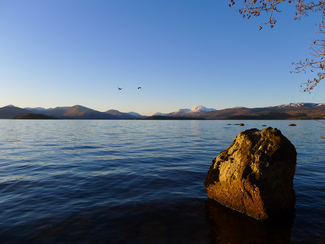 Rock and Geese, Loch Lomond