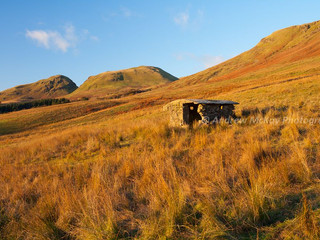 Golden Slopes & Hut, Strathblane Hills