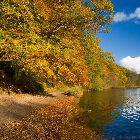 Autumn, River Earn