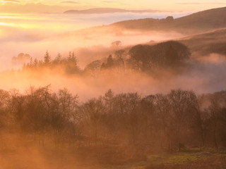 Sunset Fog, Blane Valley