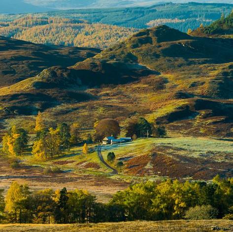 Riemore Estate, Autumn Dawn