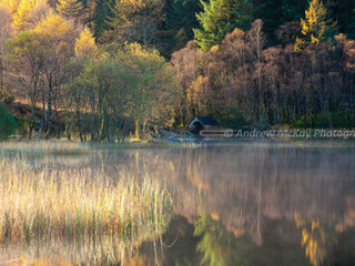Autumn Light, Loch Chon