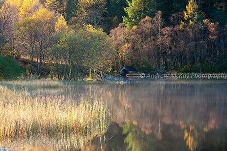 Loch in the Trossachs