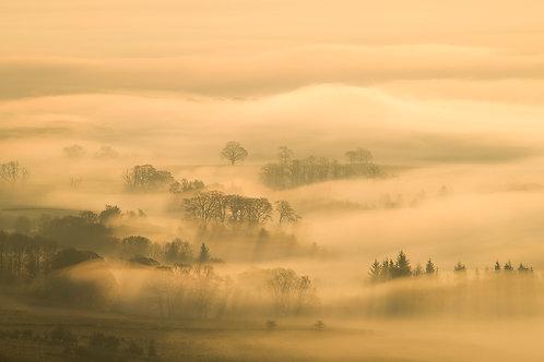 Fine art print - Campsie Mist