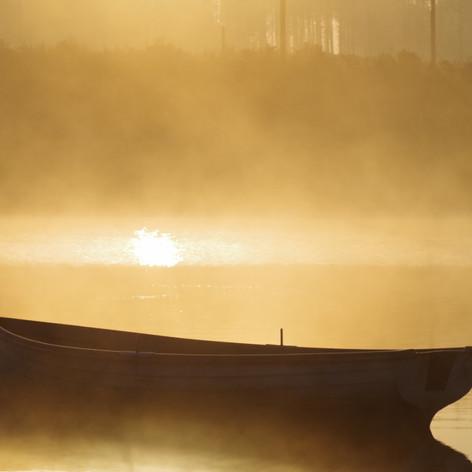 Dawn Mists
