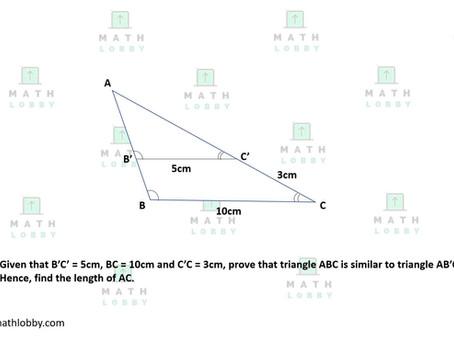 Similar Triangles Questions