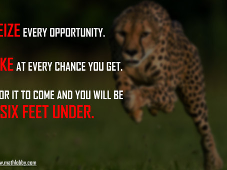 Seize Every Opportunity, regardless of how small it is