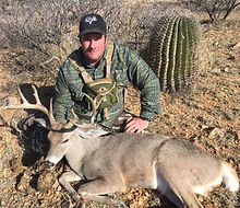 New Mexico Coues Deer