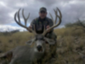 Where is the best place to hunt mule deer
