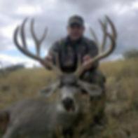 Large Mule Deer Photo