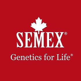 SEMEX.jpg