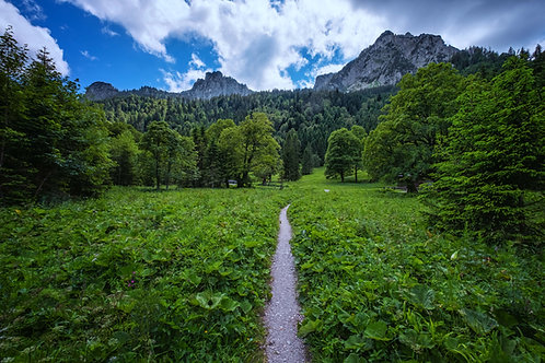 A Path To Bavarian Happiness