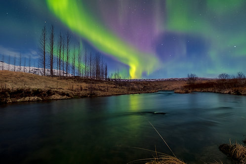 Northern Lights Will Tell You Stories