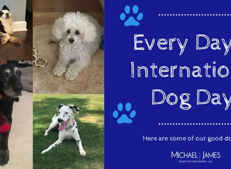Happy International Dog Day!