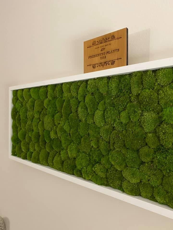 Greenhill moss frame.jpg