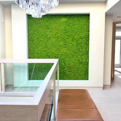 Residential Wall Chicago by Preserved Pl