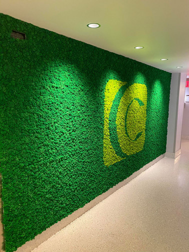 Large Logo Moss wall 2 IMF.jpg