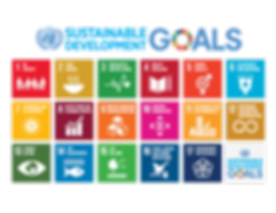 1200px-Sustainable_Development_Goals_chart.svg.png